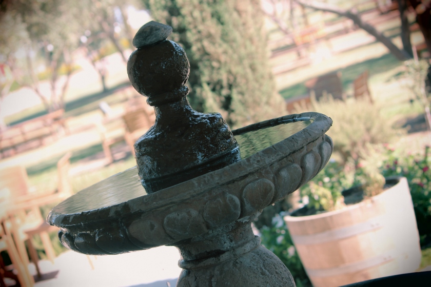 fountain, bird bath, olive oil, Queen Creek Olive Mill beautiful