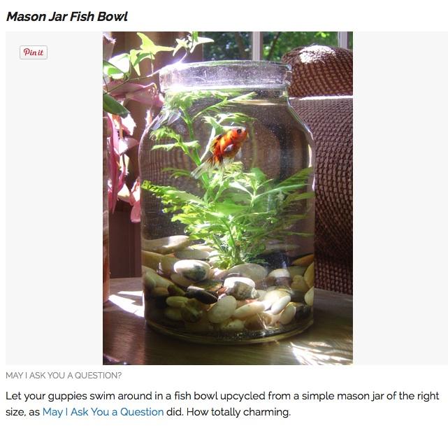 Something is Fishy? HaileyMason Jar Love!